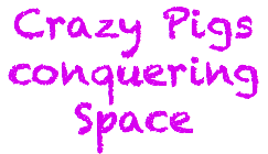 Crazy Pigs conquering Space